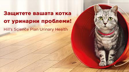 Защитете вашата котка от уринарни проблеми!