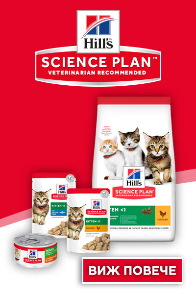 Hill's Science Plan Kitten