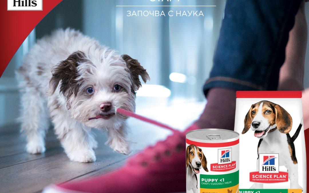 Специални оферти на Hill's за подрастващи кучета