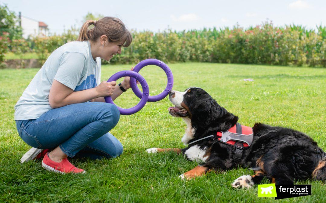 PULLER – играчката за обучение и трениране на вашето куче