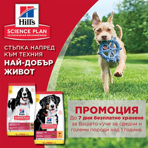 7 дни безплатно хранене с Hill's за средни и големи породи кучета